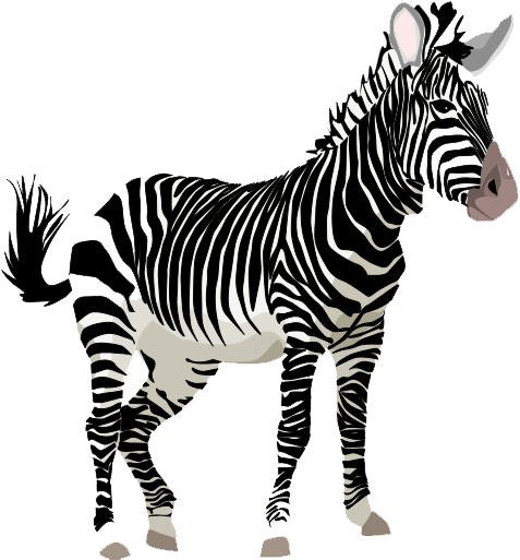 Zebra clipart transparent background PNGMart PNG Zebra Zebra Image