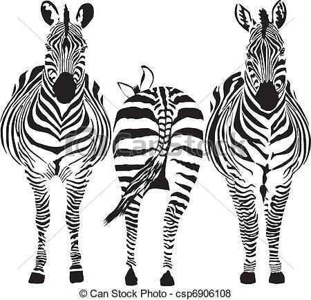 Zebra clipart two Vector of zebras  illustration