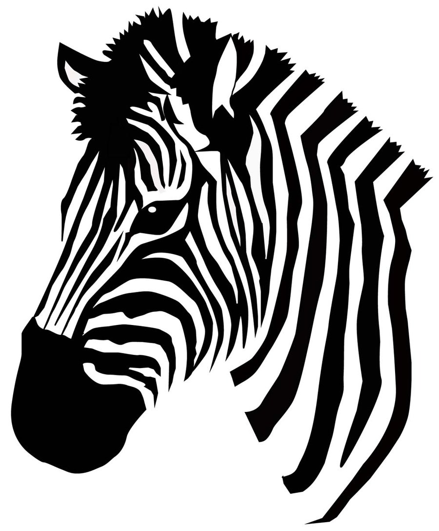 Zebra clipart vector Zebra Vector and Silhouettes Pinterest
