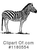 Zebra clipart vintage Free Zebra Clipart Prawny Illustration