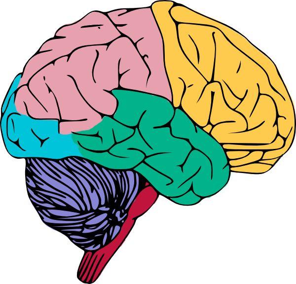 Zen clipart healthy brain #2