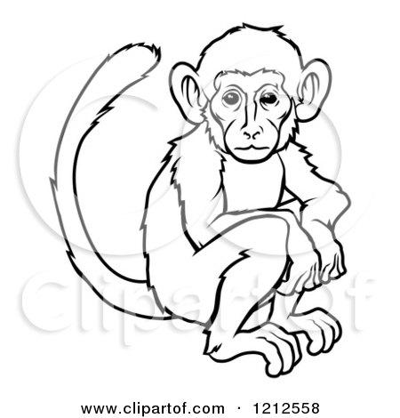 Zodiac clipart monkey Illustration monkey chinese zodiac of
