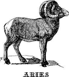 Zodiac Sign clipart birth #15