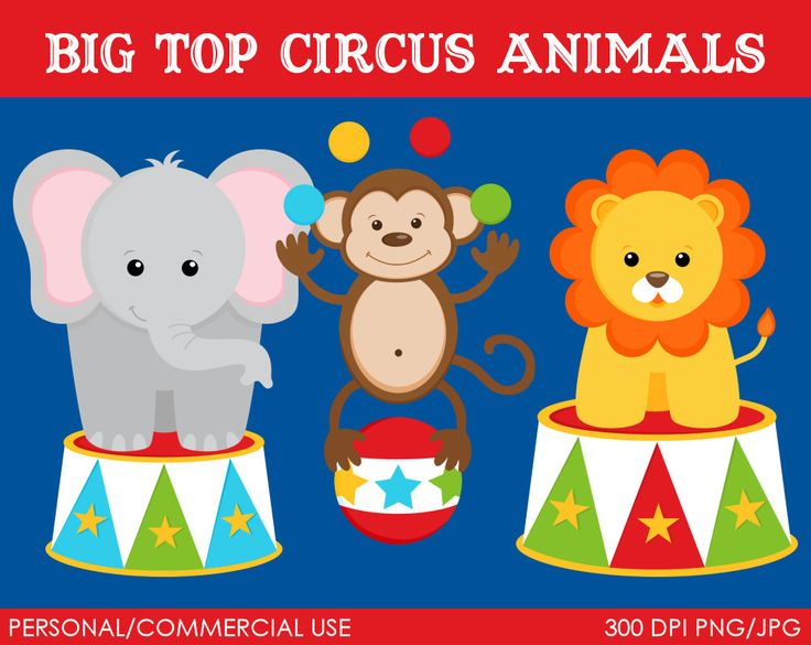 Carneval clipart circus animal On Animals Pin 57 on