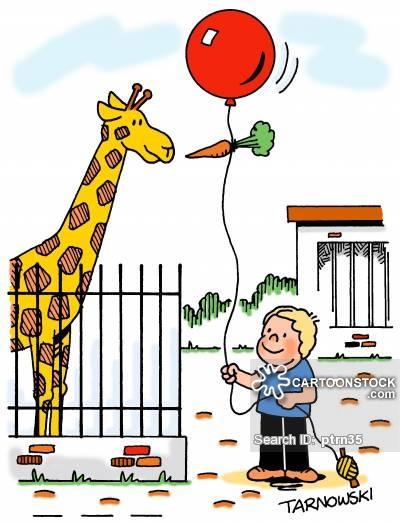 Zoo clipart feeding Feeding and Feeding Comics pictures