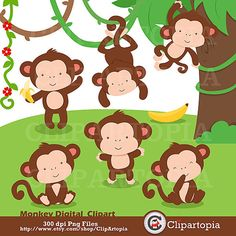 Zoo clipart jungle monkey Comercial Clipart Animals y clipart