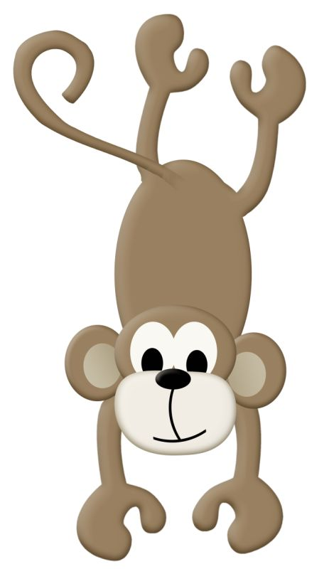 Zoo clipart jungle monkey JUNGLE Pinterest / best ANIMALS