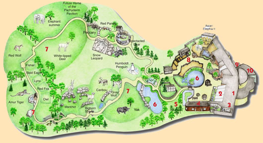 Zoo clipart zoo map Therapy Group ideas Map themes