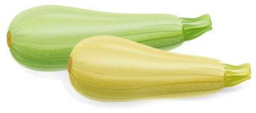 Zucchini clipart Download id Zucchini ClipartBarn clipart