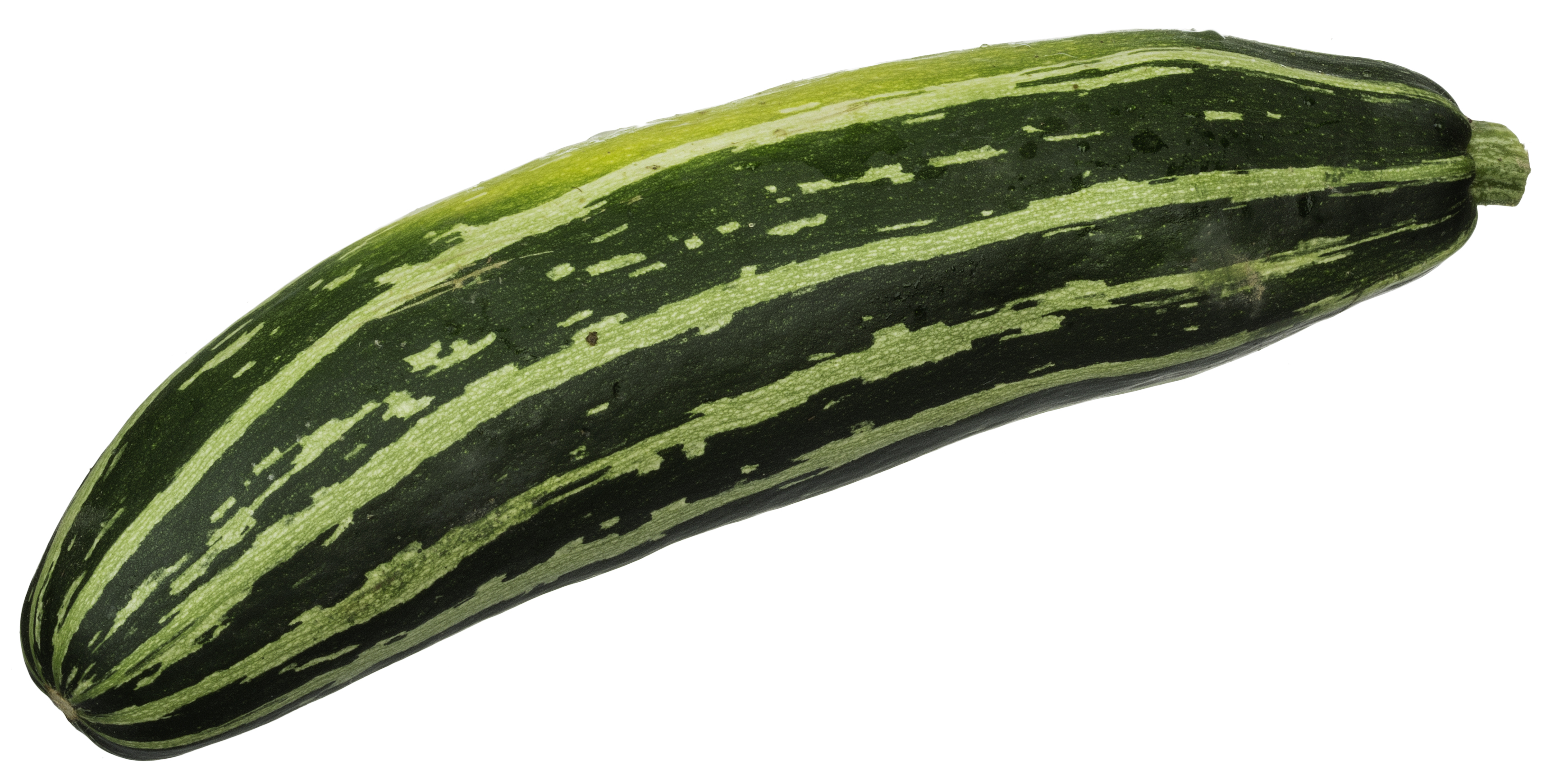 Zucchini clipart hindi Of  Types vegetables