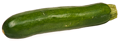 Zucchini clipart outline 4 Clipart Picture of Free