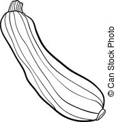 Zucchini clipart outline And coloring  Black Zucchini