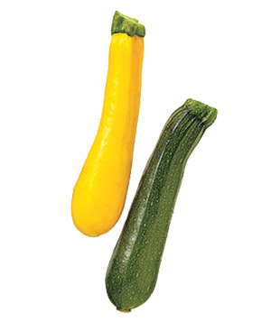 Zucchini clipart summer squash Real Food 15 and Clean