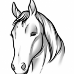 Draw Horse Heads and Faces, Step by Step, Pets, Animals, FREE ...