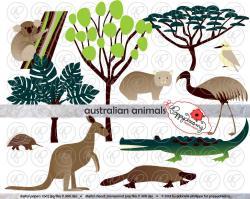 Eucalyptus clipart australian animal