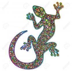 Gecko clipart rainbow