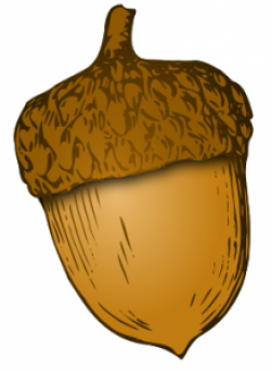 Seeds clipart