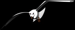 Seagull clipart albatross