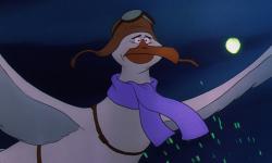 Albatross clipart orville
