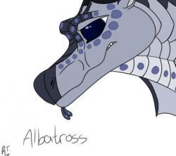 Albatross clipart scavenger