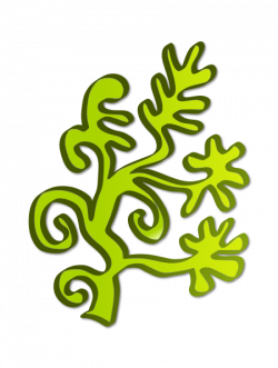 Weed clipart ocean plant