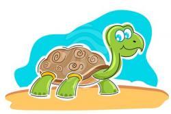 Tortoise clipart amphibian