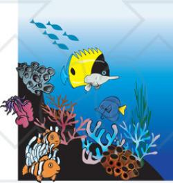 Clownfish clipart coral reef fish