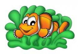 Sea Anemone clipart clownfish