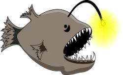 Anglerfish clipart
