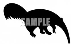 Aardvark clipart Aardvark Silhouette