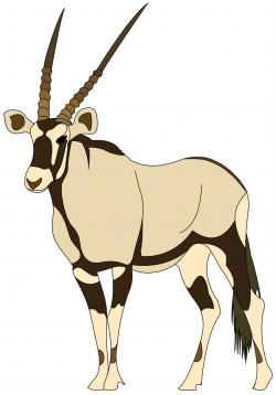 Oryx clipart antelope