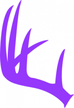 Single clipart deer antler