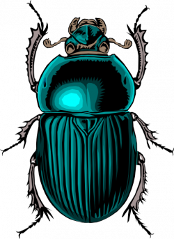 Dung Beetle clipart scarab beetle