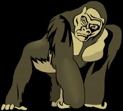 Chimpanzee clipart mountain gorilla
