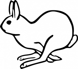 Drawn rabbit mammal
