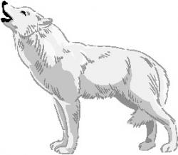 White Wolf clipart