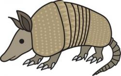 Anteater clipart Armadillo Clipart