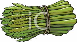 Asparagus clipart bunch
