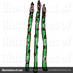 Asparagus clipart one