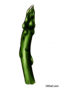 Single clipart asparagus