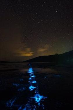Aurora Borealis clipart