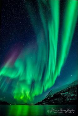 Aurora Borealis clipart oslo