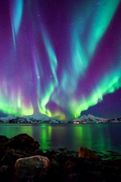 Aurora Borealis clipart real