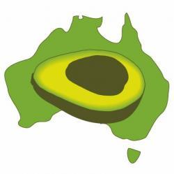 Avocado clipart australian