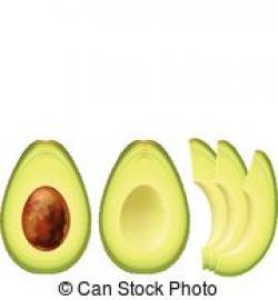 Avocado clipart half