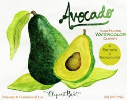 Avocado clipart mango seed
