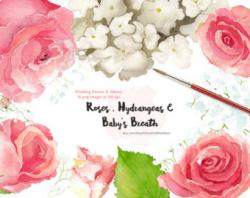Baby's Breath clipart