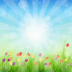 Meadow clipart spring background
