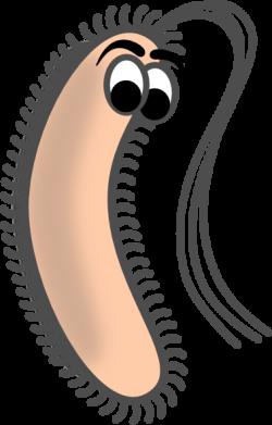 Escherichia Coli clipart funny