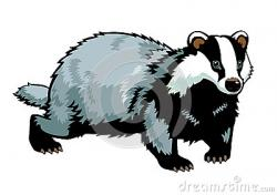 Honey Badger clipart cute